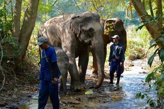 Mandalao-Tour02_04